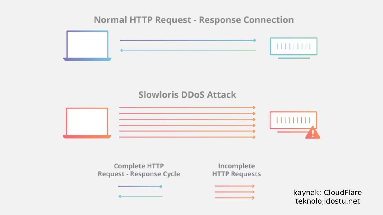 Slowloris DDoS